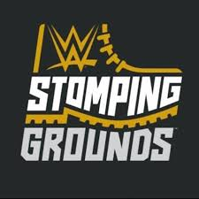 WWE PPV Reports Archives - Pro Wrestling Dot Net