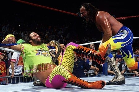 ake Robert's snake takes a bite out of venomous Randy Savage in the ring