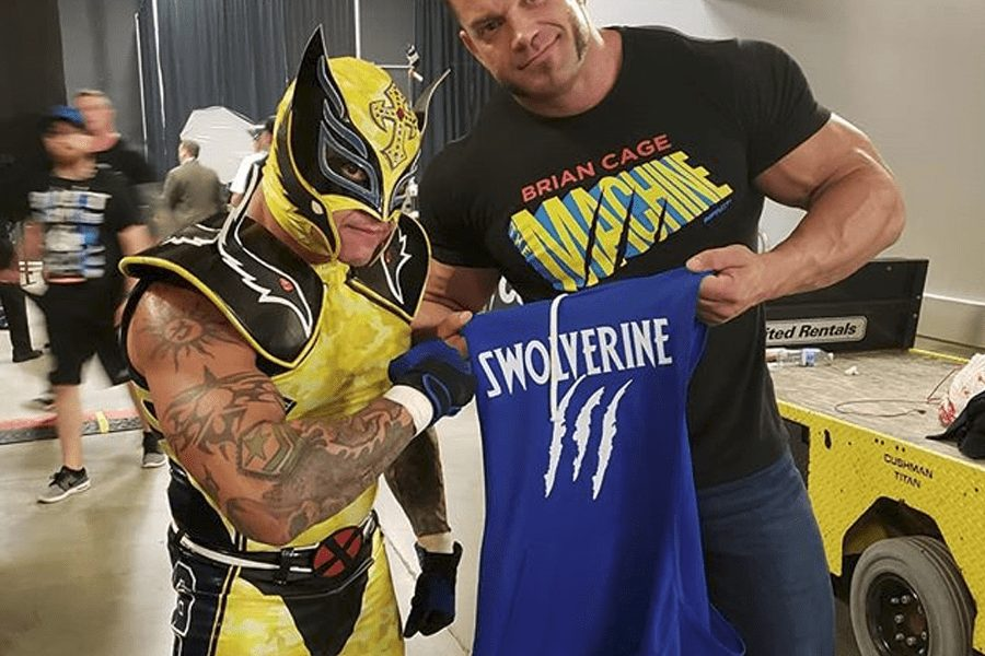 Rey Mysterio as Wolverine at 2018's ALL IN event. Rey's take on the mutant named Logan took inspiration from his classic comic look rather than the live action movie incarnations. The forehead crucifix, the wing design on the masks sides and shoulder pads and the 619 on the top sides of the tights are the only things from preventing this from being a full-on Wolverine costume.