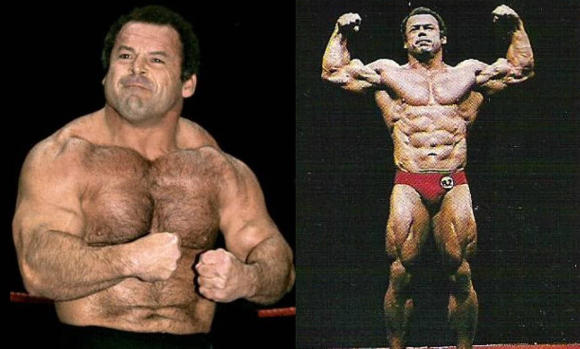 Killer Kowalski tells the story of the time a wrestling bear overpowered and showed a bit of love to 'The Polish Powerhouse' Ivan Putski