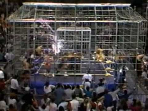 The Dome Steel Cage