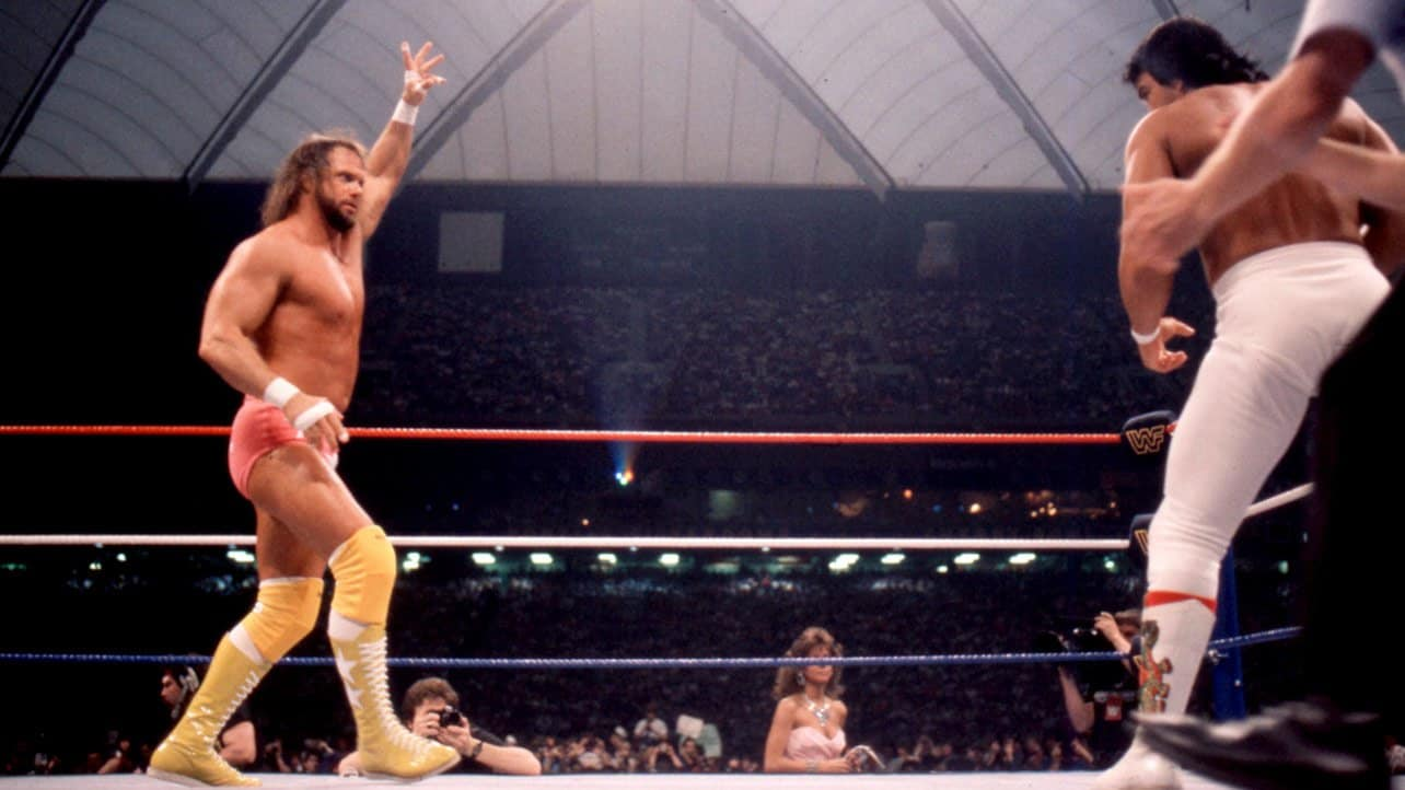"The match between my brother ""Macho Man"" Randy Savage and Ricky ""The Dragon"" Steamboat at WrestleMania III ruined his life because he could never top it."