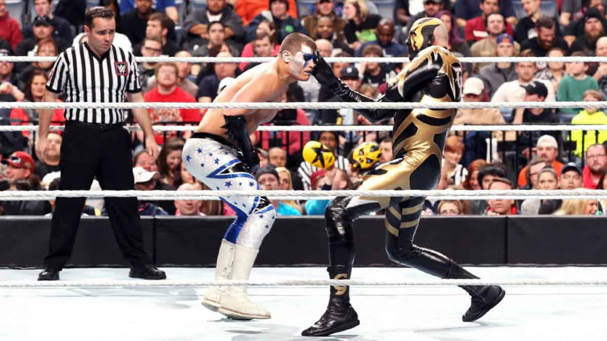 The Cody and Dustin Rhodes brother versus brother match occurred at WWE's Fastlane 2015 pay-per-view, but both admit that it was terrible and the match deserved a bigger stage than that. [Photo: WWE.com]