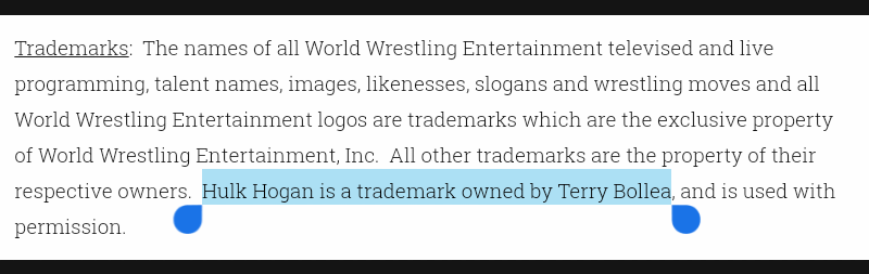 Terry Bollea finally purchased the rights to the name Hulk Hogan in 2005.