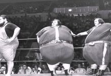 Image result for the mcguire twins wrestling