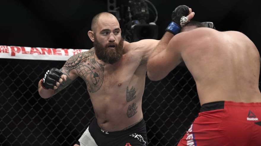 Travis Browne used his MMA skills to defend Bret Hart.