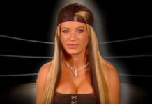 Ashley Massaro | Her Tragic Story a Result of WWE Neglect?
