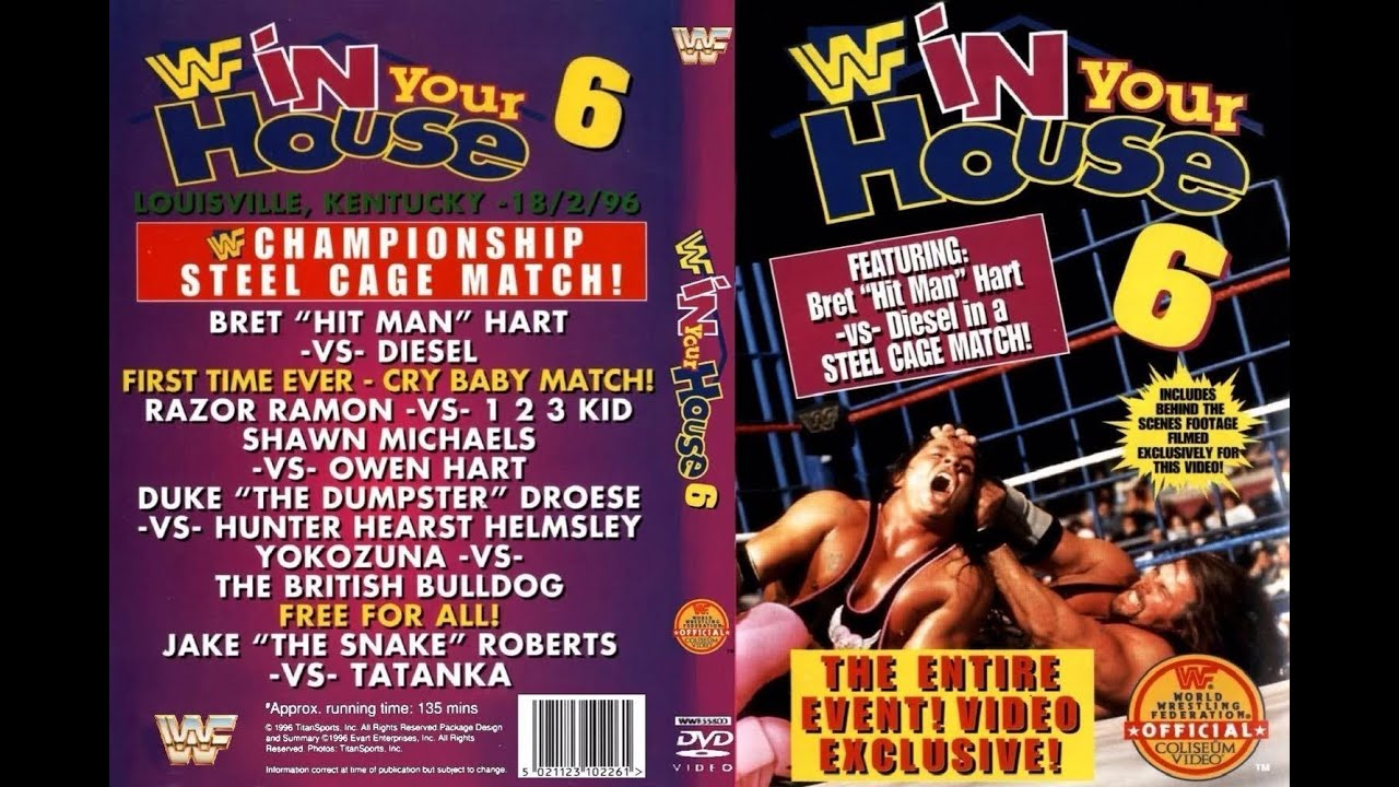 WWE In Your House 6: Rage in a Cage pay-per-view poster.