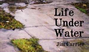 Life Under Water, by Jim Carrier