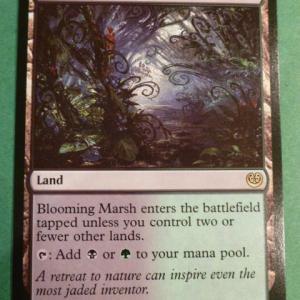 Blooming Marsh Holo black core