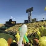 阪神 タイガース 2019 オープン戦 日程 巨人戦 甲子園 試合 いつ