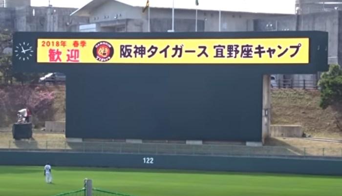 阪神 2019 キャンプ 練習試合 日程 対戦相手