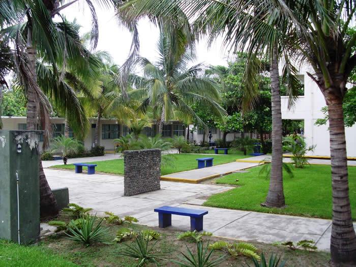 La universidad veracruzana y el campus nuevas tecnologias for Universidades en xalapa