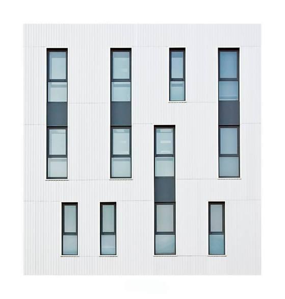 """""""Windows"""" - Jose Beut - 230915"""