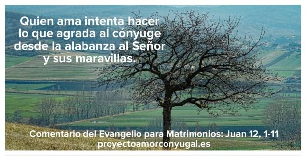 Valor de los detalles - Proyecto Amor Conyugal
