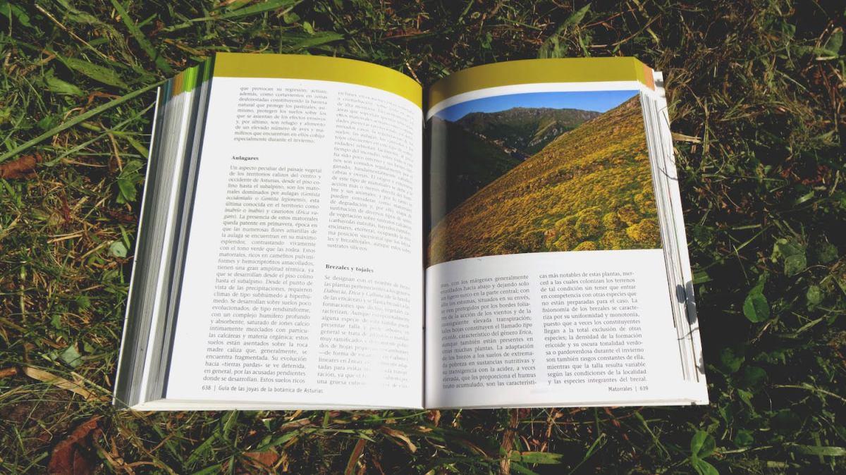 Guía-de-las-joyas-de-la-botánica-de-Asturias-5