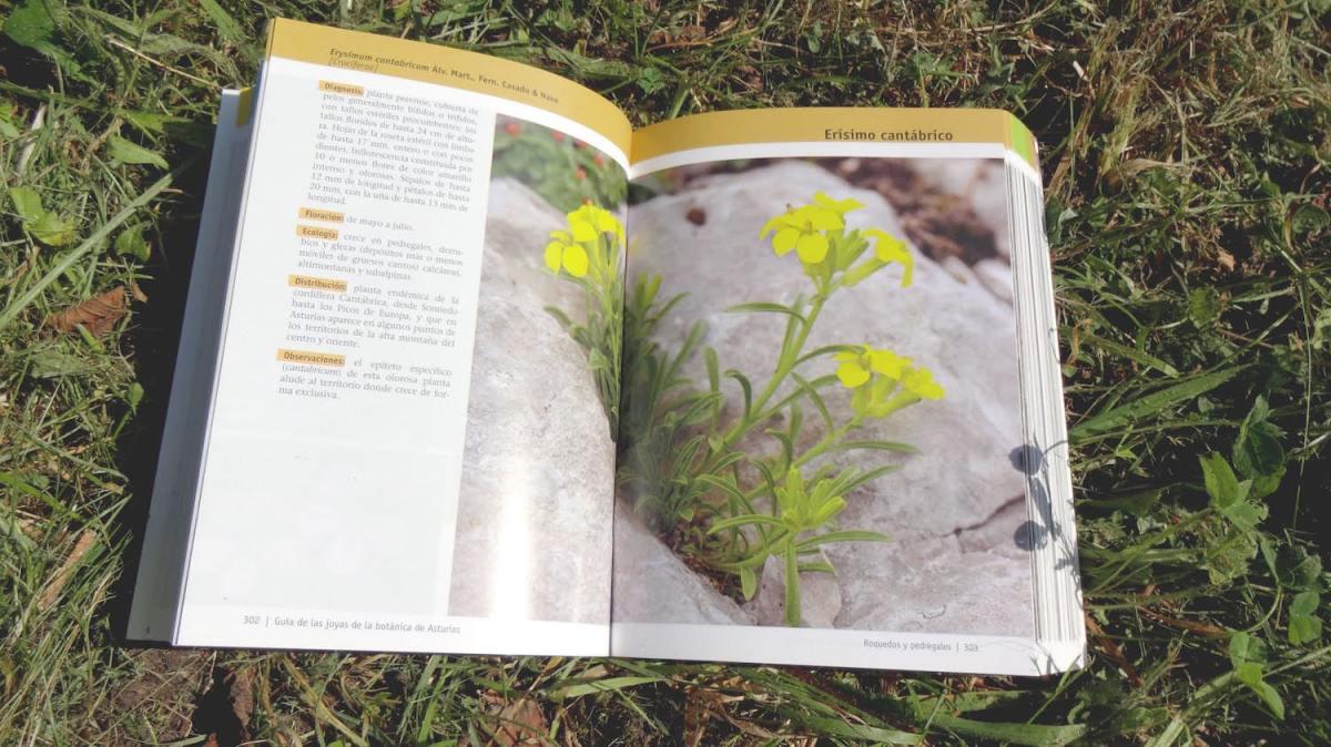 Guía-de-las-joyas-de-la-botánica-de-Asturias-7
