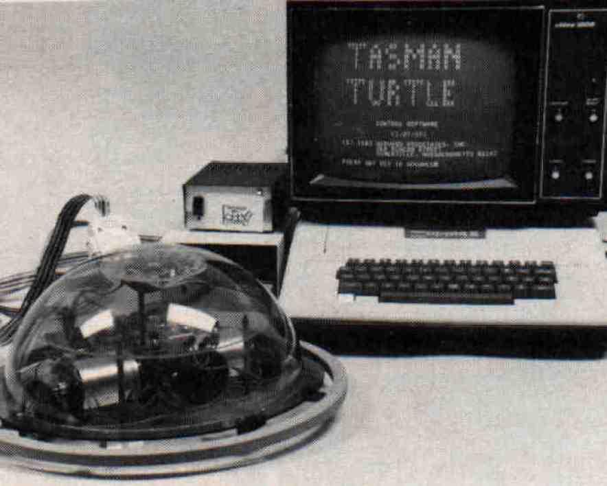 https://i2.wp.com/proyectoidis.org/wp-content/uploads/1968/03/turtle_with_apple.jpg?resize=884%2C708