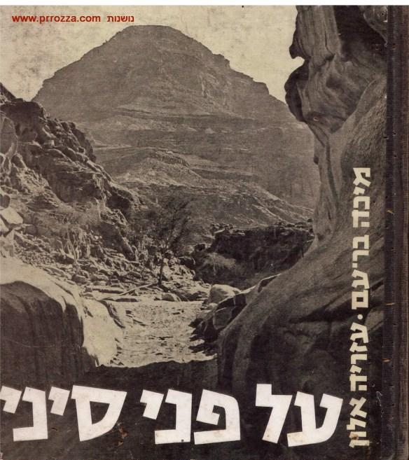 Sinai book cover-s