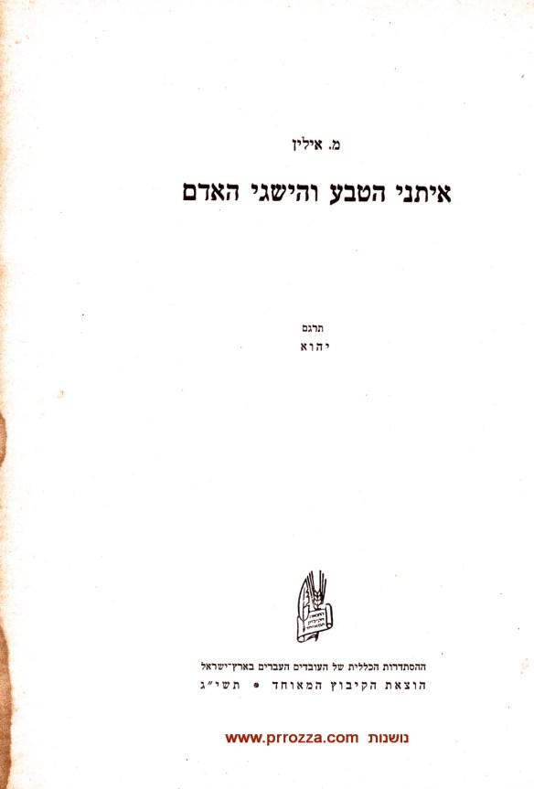 Nada Ilin-1_002-s
