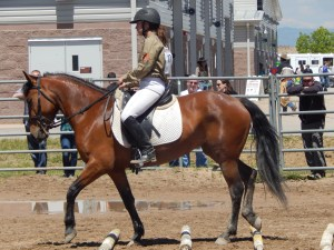 Cayla Stone - Calypso - Extreme Mustang Makeover 2015 - Trail Class