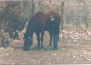 Billy with Jarrod - 2001 - Poudre River Stables