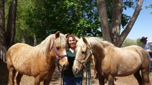 Karin Livingston - Palomino Morgan mares - Sandy - Stardust - Poudre River Stables