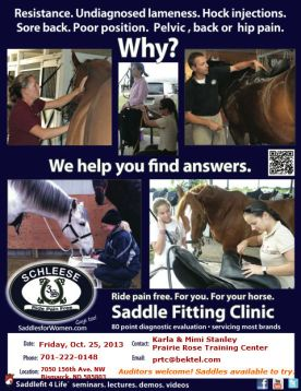 Schleese Clinic Poster 2013 - info