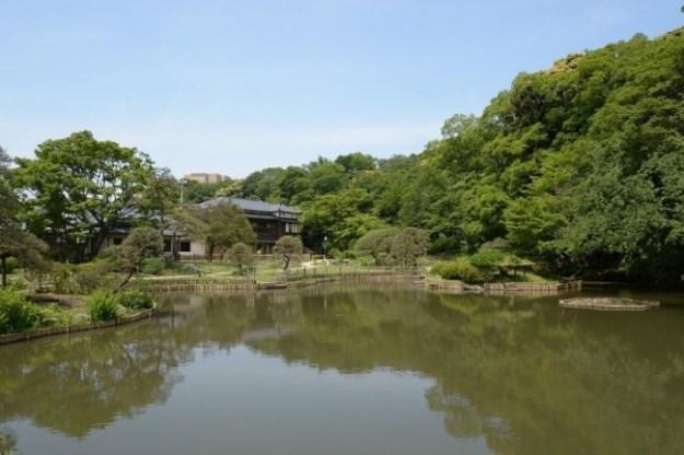 ▲新緑の季節の肥後細川庭園