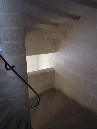 14世紀初頭の重要文献が発見された修道院内の地下に繋がる螺旋階段