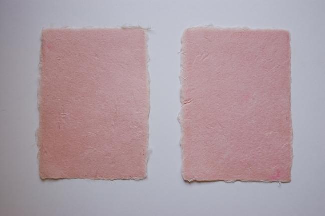 桜色の葉書作り