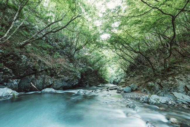 山梨県小菅村は多摩川源流の美しい水と豊かな自然に溢れている