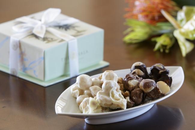 マカデミアナッツ チョコレート(イメージ)
