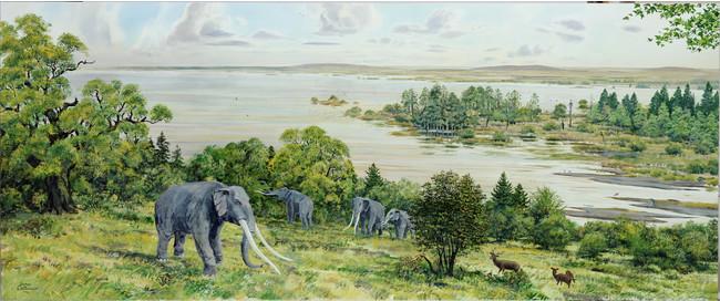 古琵琶湖周辺の景観図 画:ブライアン・ウィリアム 所蔵:滋賀県立琵琶湖博物館