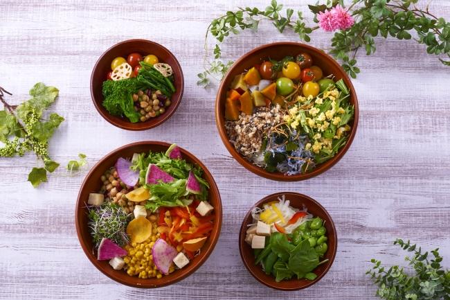 サラダバーでは健康や美容に役立つ季節の野菜を用意