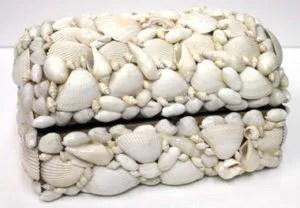 shell treasure box