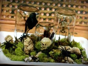 creepy terrarium