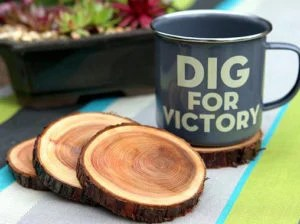 natural-branch-coasters