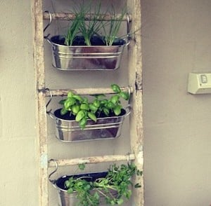 50 Cheap And Easy Diy Herb Garden Ideas Prudent Penny Pincher