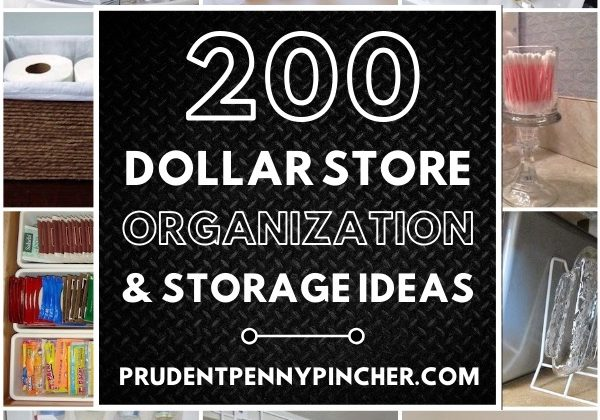 200 Dollar Store Organization and Storage Ideas
