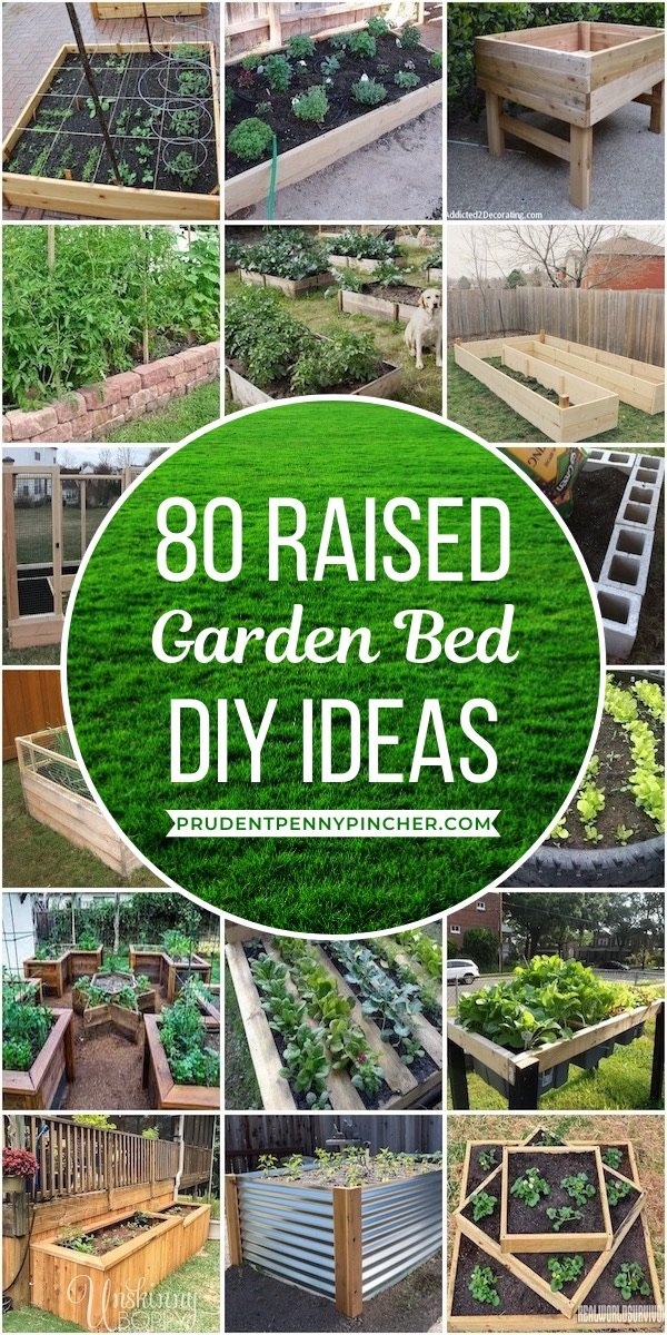 Picture of: 80 Best Diy Raised Garden Beds Prudent Penny Pincher