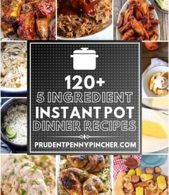 120 Best 5 Ingredient Instant Pot Recipes