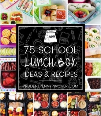 75 Back to School Lunch Box Ideas