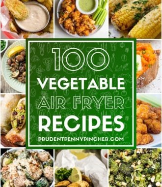 100 Vegetable Air Fryer Recipes