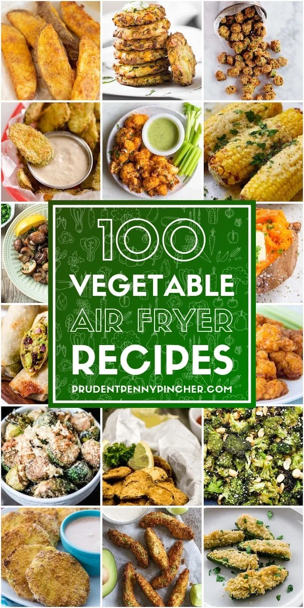 100 Vegetable Air Fryer Recipes