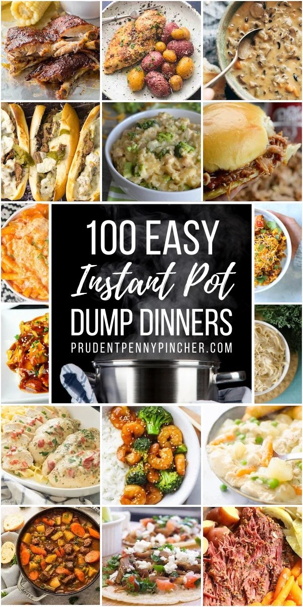 100 Dump and Go Instant Pot Dinner Recipes