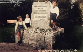 Neuhof (Nowy Dwór)