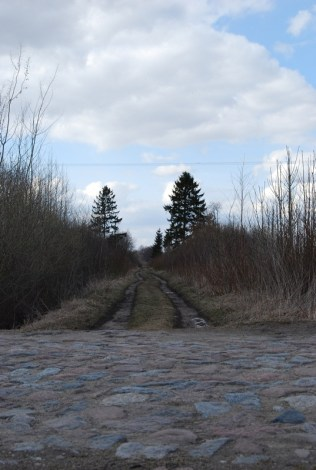 Ruskie Pole/Reuschenfeld (d. Kreis Gerdauen) 2012