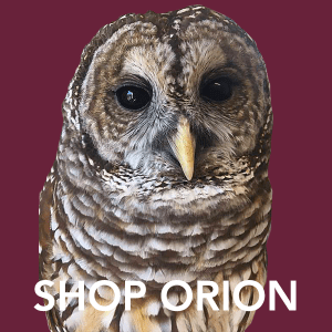 Shop Orion