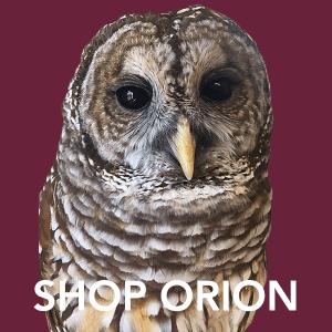 Shop Orion